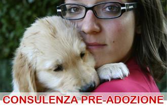 consulenza pre-adozione cane
