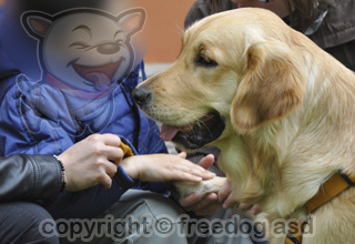 pet therapy aiuto concreto