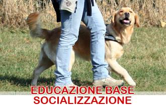 educazione socializzazione cani