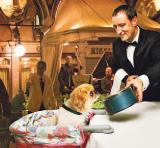 seminario alimentazione cane